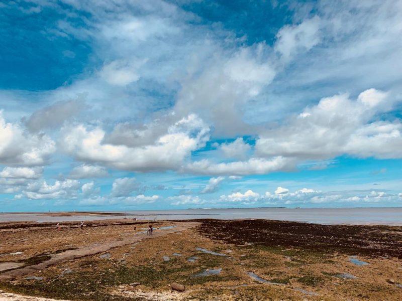 quelque part sur l'Ile d'Oléron 2